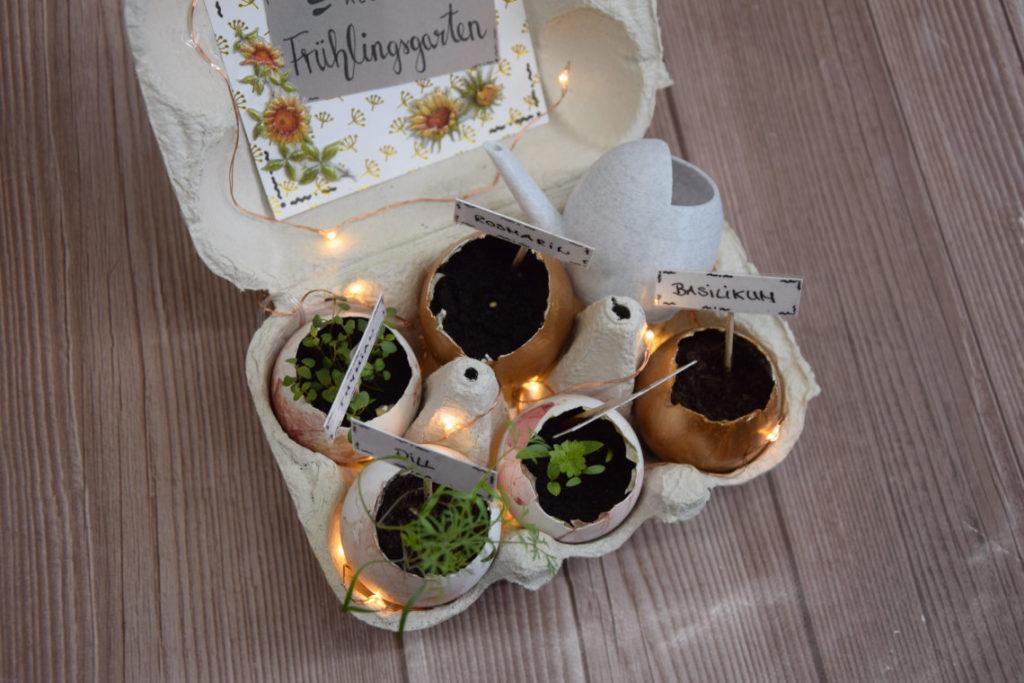 DIY Ostergeschenk: Frühlingsgarten im Eierkarton